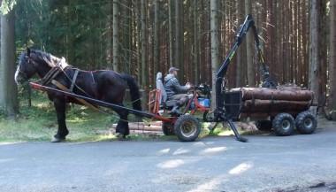 Vyvážečky za koně